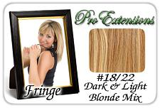 #18/22 Dark Blonde w/ Highlights Pro  Fringe Clip In Bangs Pro-1
