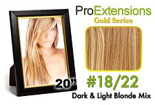 #18/22 Dark Blonde w/Light Blonde Highlights Pro-1302