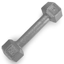 5lb Cast Iron Hex Dumbbell SWGT-301