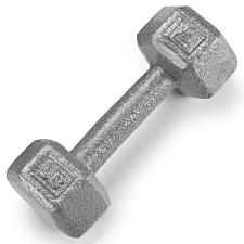 7lb Cast Iron Hex Dumbbell SWGT-302