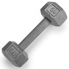 10lb Cast Iron Hex Dumbbell SWGT-303