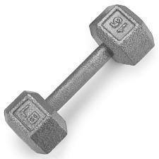15lb Cast Iron Hex Dumbbell SWGT-304