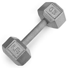 20lb Cast Iron Hex Dumbbell SWGT-305