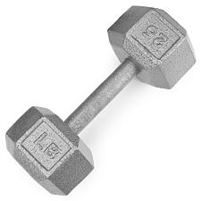 25lb Cast Iron Hex Dumbbell SWGT-306