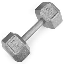 30lb Cast Iron Hex Dumbbell SWGT-307