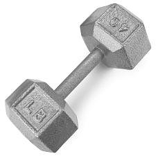 40lb Cast Iron Hex Dumbbell SWGT-309