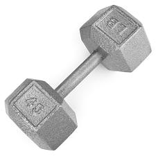 45lb Cast Iron Hex Dumbbell SWGT-310