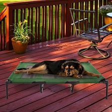 Elevated Pet Bed-Portable Raised Cot-Style Bed W/ Non-Slip Feet,