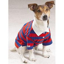 Pet Edge Back To School Rugby Polos - XS-Red/Blue