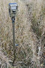 HME Products TCH-G Hme Trail Camera Holder Grnd Mount